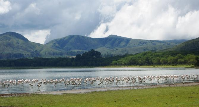 Amboseli National Park - Lake Naivasha