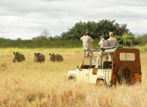 Exotic Safari Tour