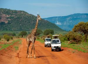 8 DAYS KENYA PACKAGE